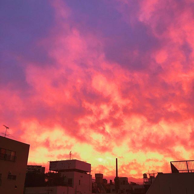 事務所から見える夕焼け。空が燃えているようだ。#夕焼け